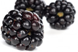 Blackberries-closeup