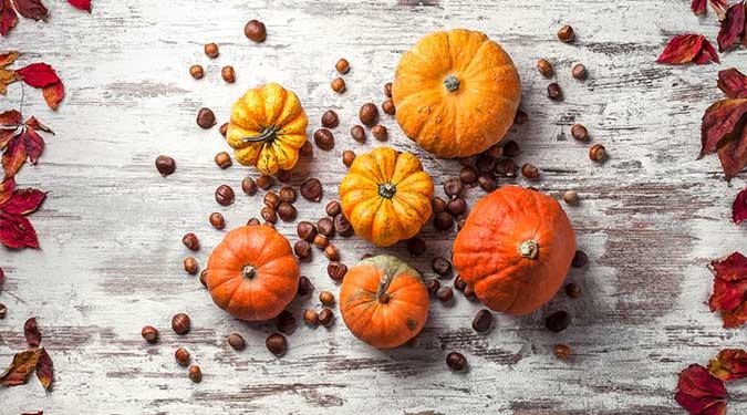 Chestnut Pumpkin Vanilla Illume Candle Reviews