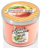 Peach-cilantro-twist-candle-150
