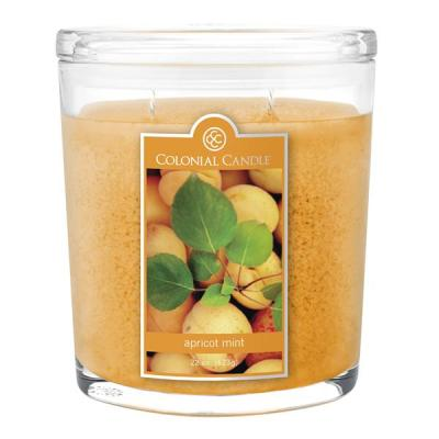 apricot-mint-colonial-candle