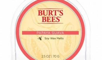 Papaya Guava – Burt's Bee's Wax Melt Review