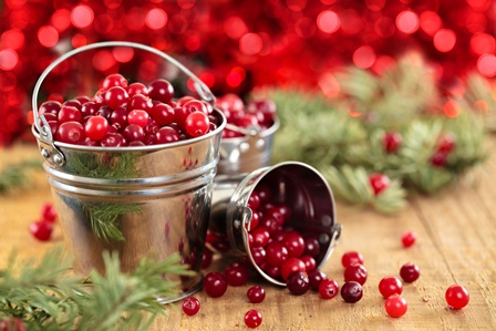 Cranberry Christmas Candle