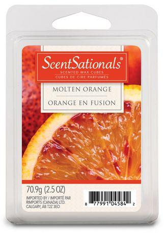 molten orange wax melts