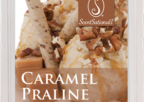 Caramel Praline ScentSationals Wax Melt Review