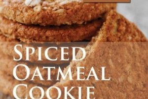 Spiced Oatmeal Cookie