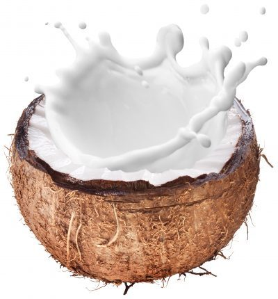 Spiced Coconut Milk
