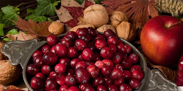 Cranberry Apple Wax Melt Review