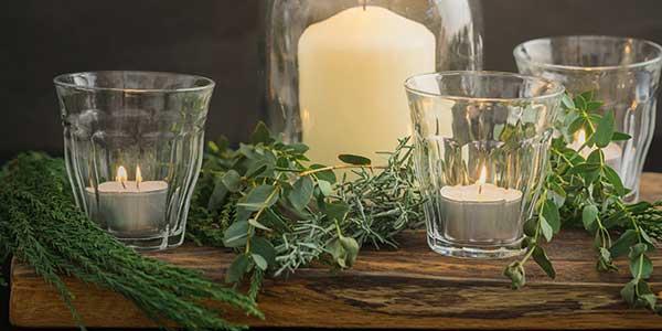 Eucalyptus Candle Review