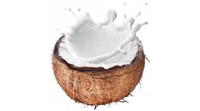 Coconut Candle Review