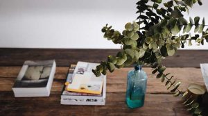 Minted Eucalyptus Candle Review
