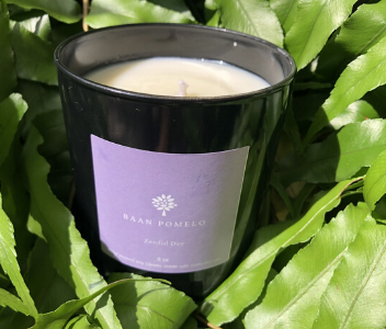 lavender soy candle zenful day from Baan Pomelo