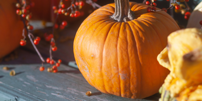 pumpkins for fall