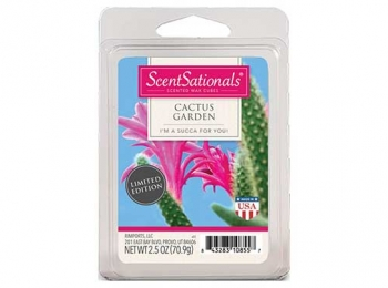 ScentSationals Wickless Candles