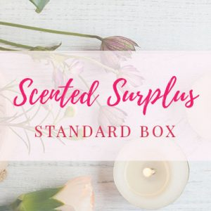 Candlefind Scented Surplus Standard Box- Wax Melts & Accessories
