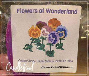 Closet Full of Wax Flowers of Wonderland Wax Melts