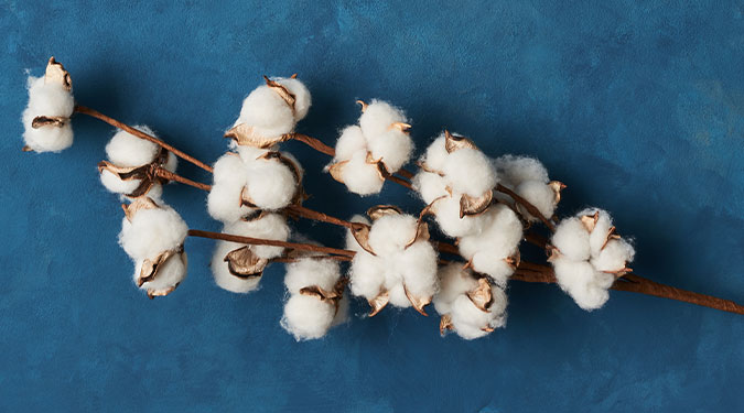 Cotton + Indigo Candle Review