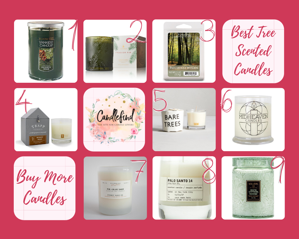 Best Tree Scented Candles