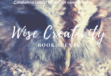 Wise Creativity Wax Melts Review