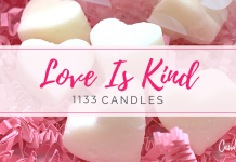 1133 Candles Love Is Kind Wax Melts