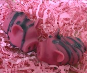 Luna Wax Piggy Melts June Sneak Peek