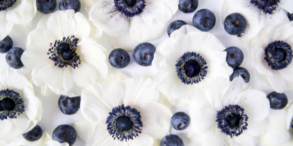 Pelican Scents Blueberry Wax Melt