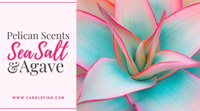 Pelican Scents Sea Salt & Agave Wax Melts Review