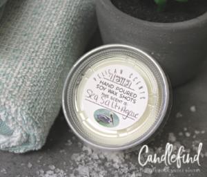 Pelican Scents Sea Salt & Agave Soy Wax Melts