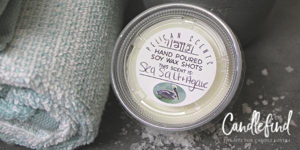 Pelican Scents Sea Salt & Agave Wax Melt Review