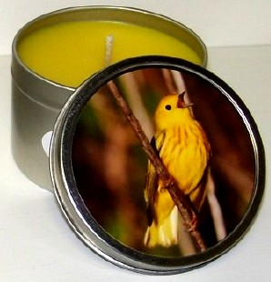 Chirpin' Time scented candle review from DnD Ranch Aroma's, Candlefind.com, the site for candle lovers