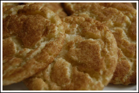 Snickerdoodle scented candle review from Candle Marketplace