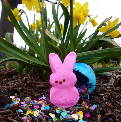 Easter Bunny scented melt review