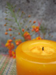 Candles by Donald review, Candlefind.com, the site for candle lovers