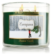 Evergreen - White Barn Candle review
